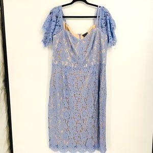 City Chic Blue  Lace Whisper  Dress